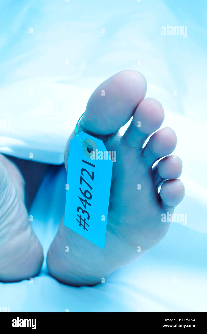 closeup of the feet of a dead body covered with a sheet and with a tag with an identification number tied on the - Stock Image