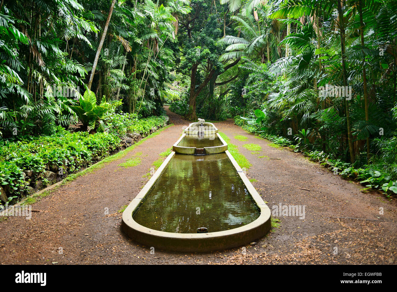 water feature in allerton national tropical botanical garden within