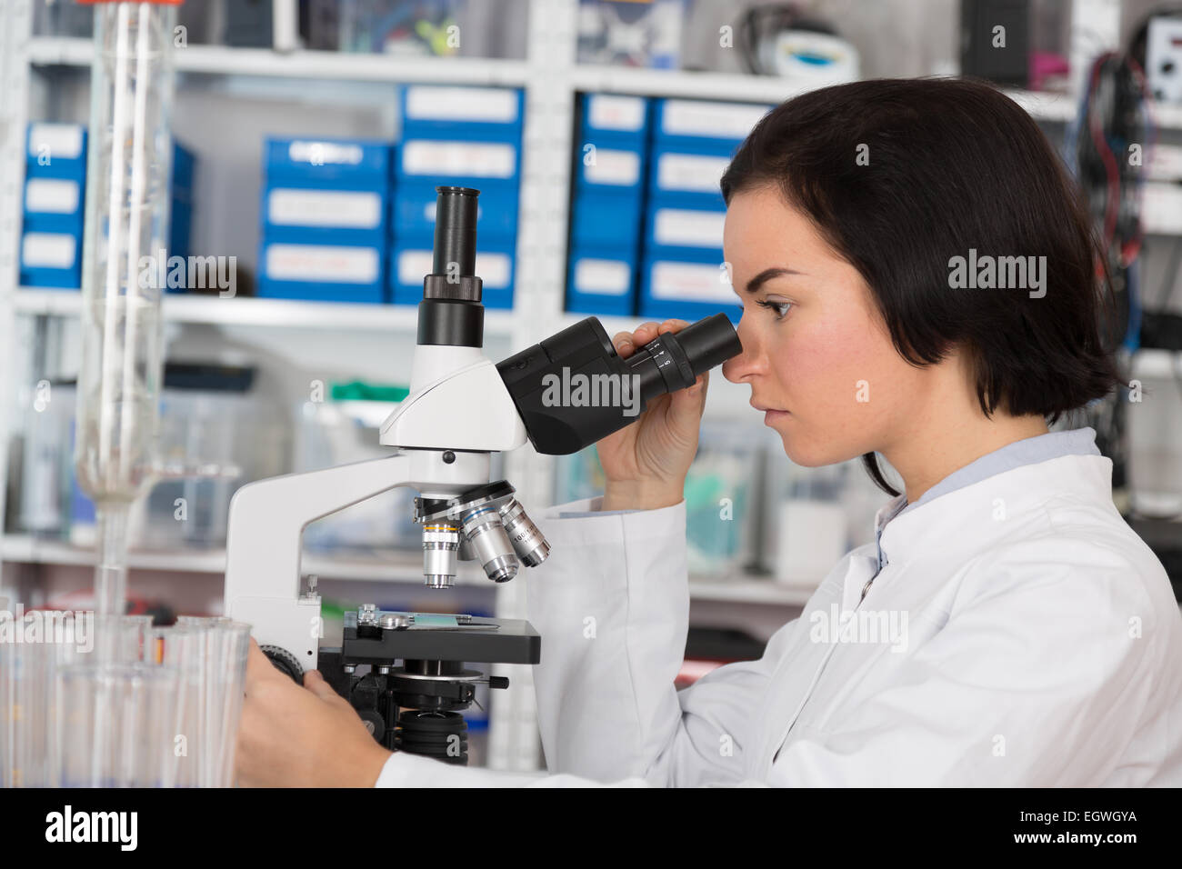 Scientist young woman using a microscope in a science laboratory - Stock Image