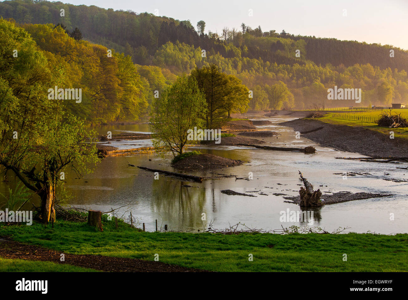 Renaturation part of river Ruhr, rebuild in the way the river was in its origin, nature preserve, landscape protection Stock Photo