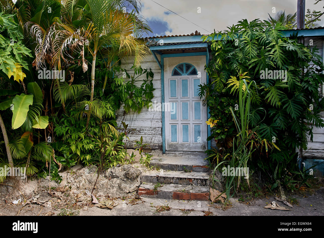 Chattel Home Front Of House With Just The Door Visible Shrubs And
