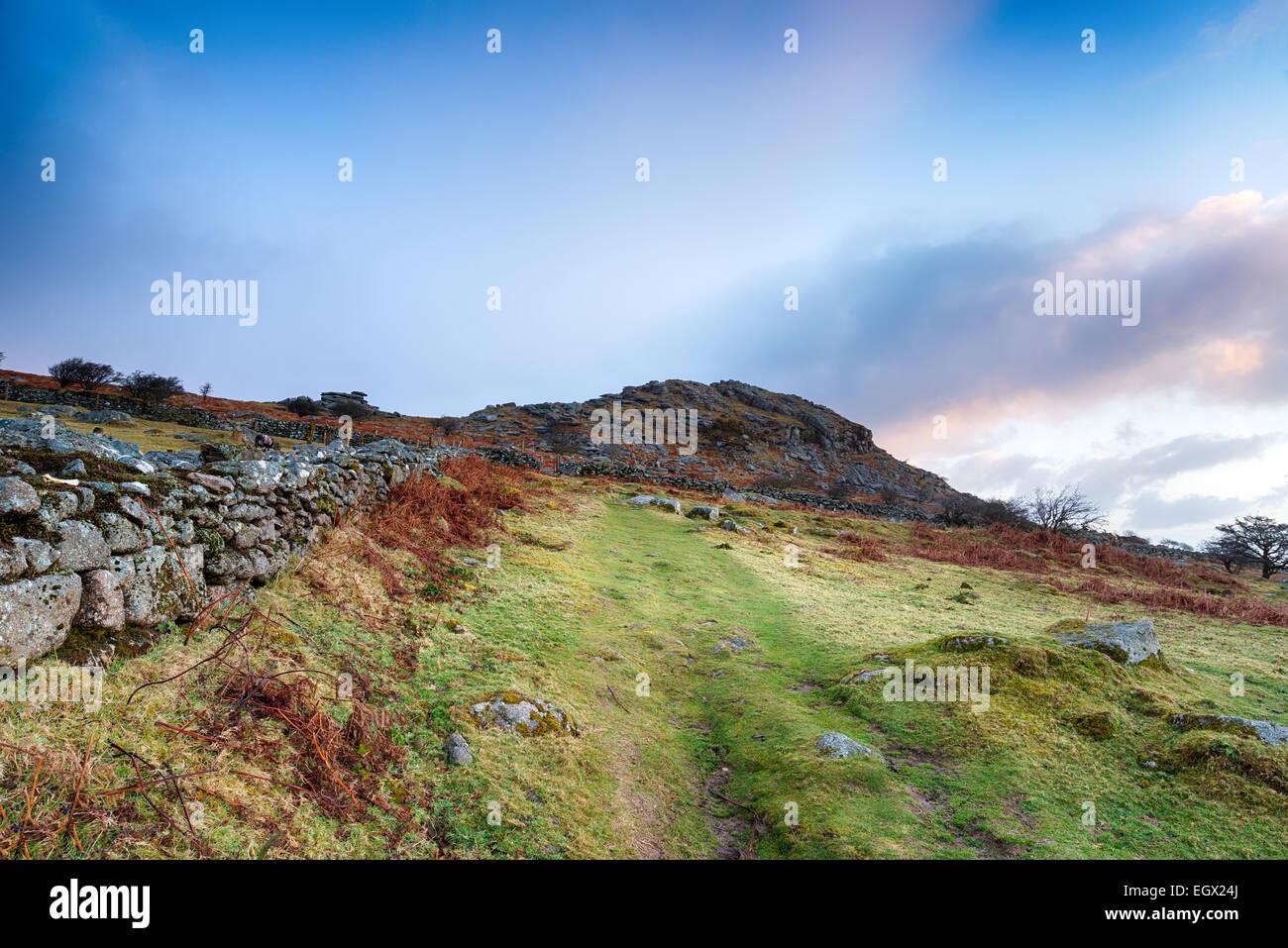 Moorland track leading to Sharp Tor near Henwood on Bodmin Moor in Cornwall Stock Photo