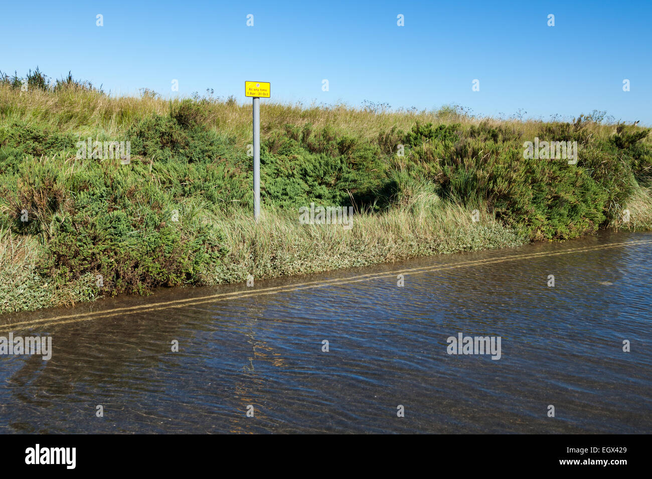 Tidal flooding of the beach road, Brancaster, North Norfolk, England, UK - Stock Image