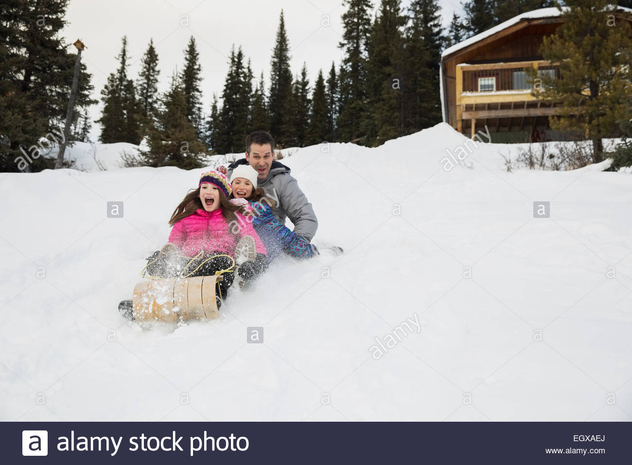 Father and daughters sledding on snowy hillside - Stock Image