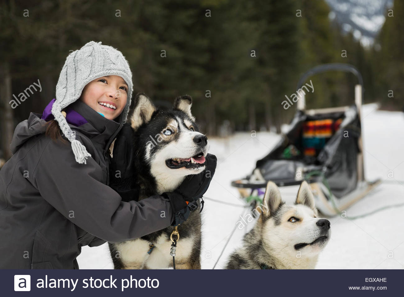 Girl hugging dogsled dog in snow - Stock Image