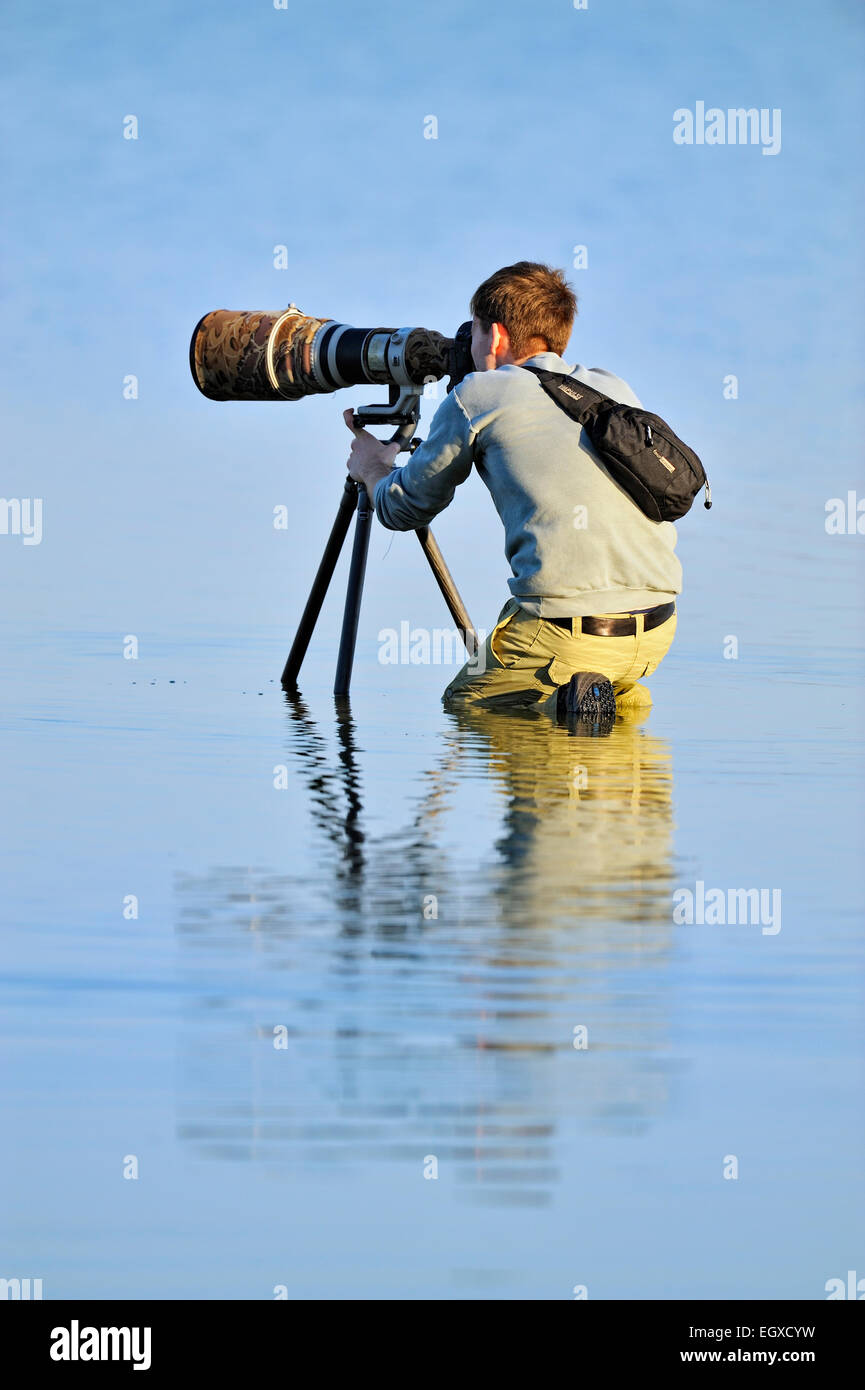 Photographer using a telephoto lens for wading birds in a shallow lagoon Ft. De Soto Park St. Petersburg Florida - Stock Image