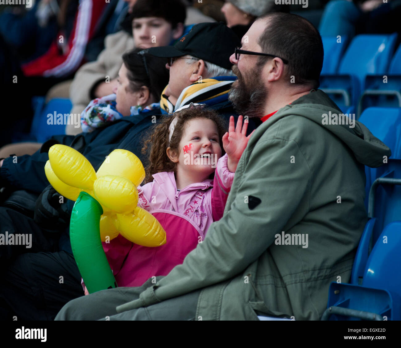 Pix of Welsh supporters at London Welsh v London Irish Aviva Premiership Rugby match on St Davids Day (1 March 2015) - Stock Image