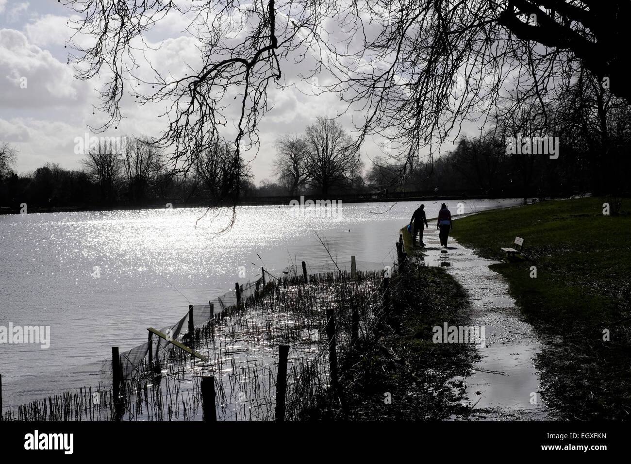 A couple in silhouette walking by Hampstead Heath ponds, London - Stock Image