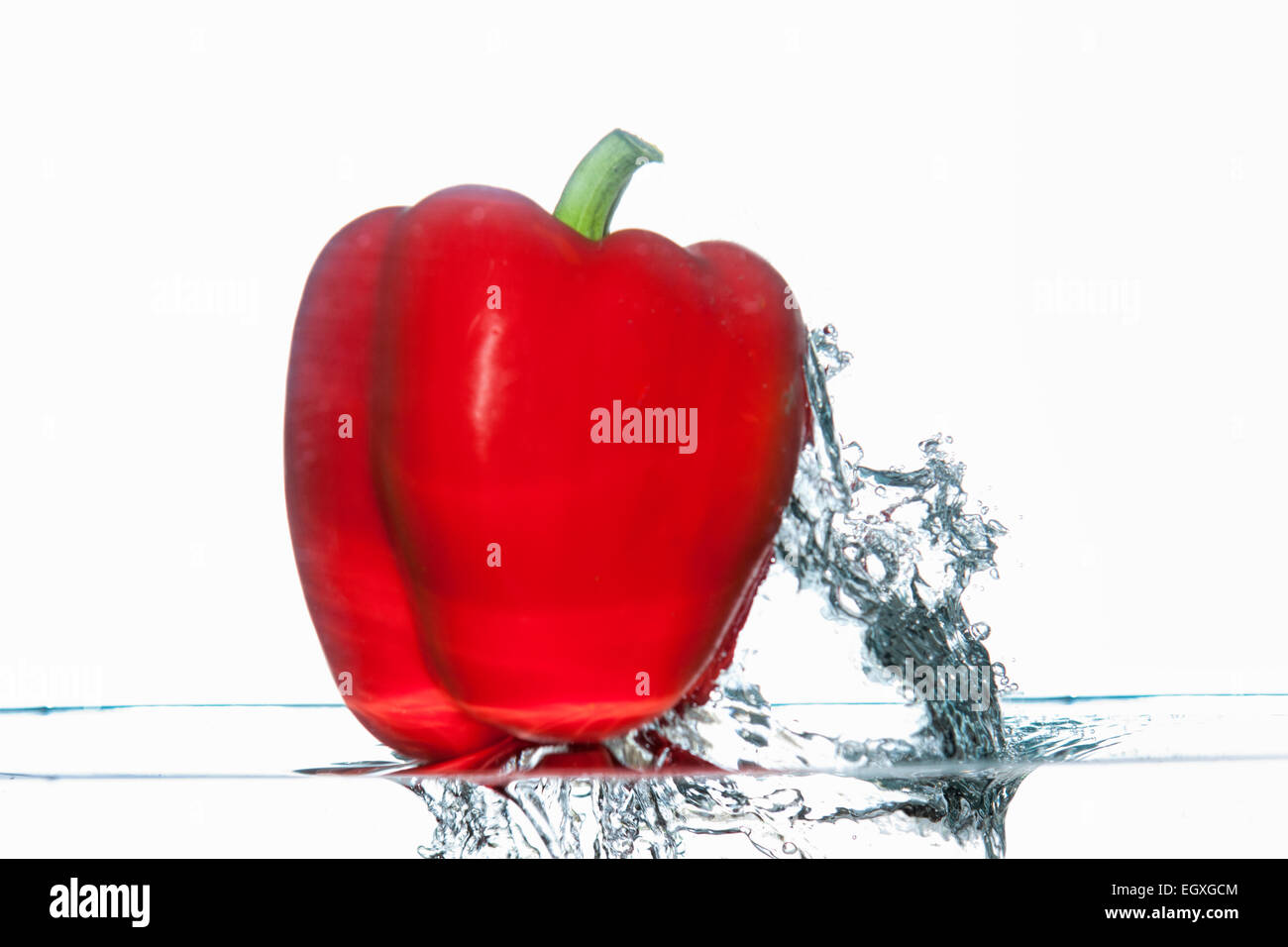 Red bell pepper shoots up out of water. - Stock Image