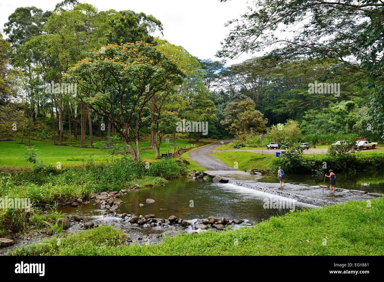 River crossing at picnic area in Keahua Forestry Arboretum (part of Wailua River State Park), Kauai, Hawaii, USA - Stock Image
