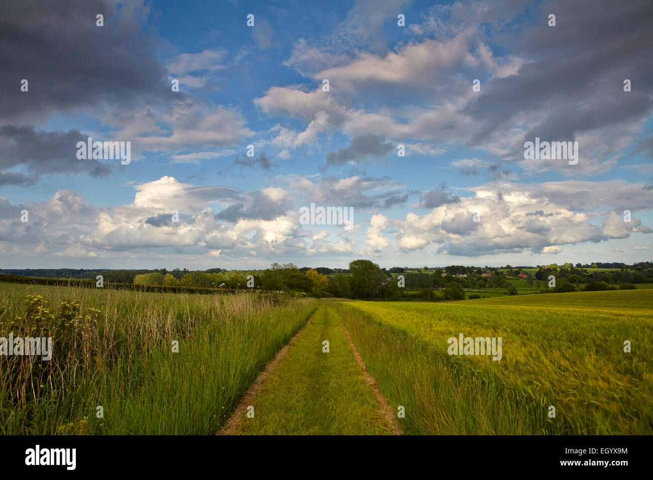 Angles Way footpath in Norfolk, UK - Stock Image
