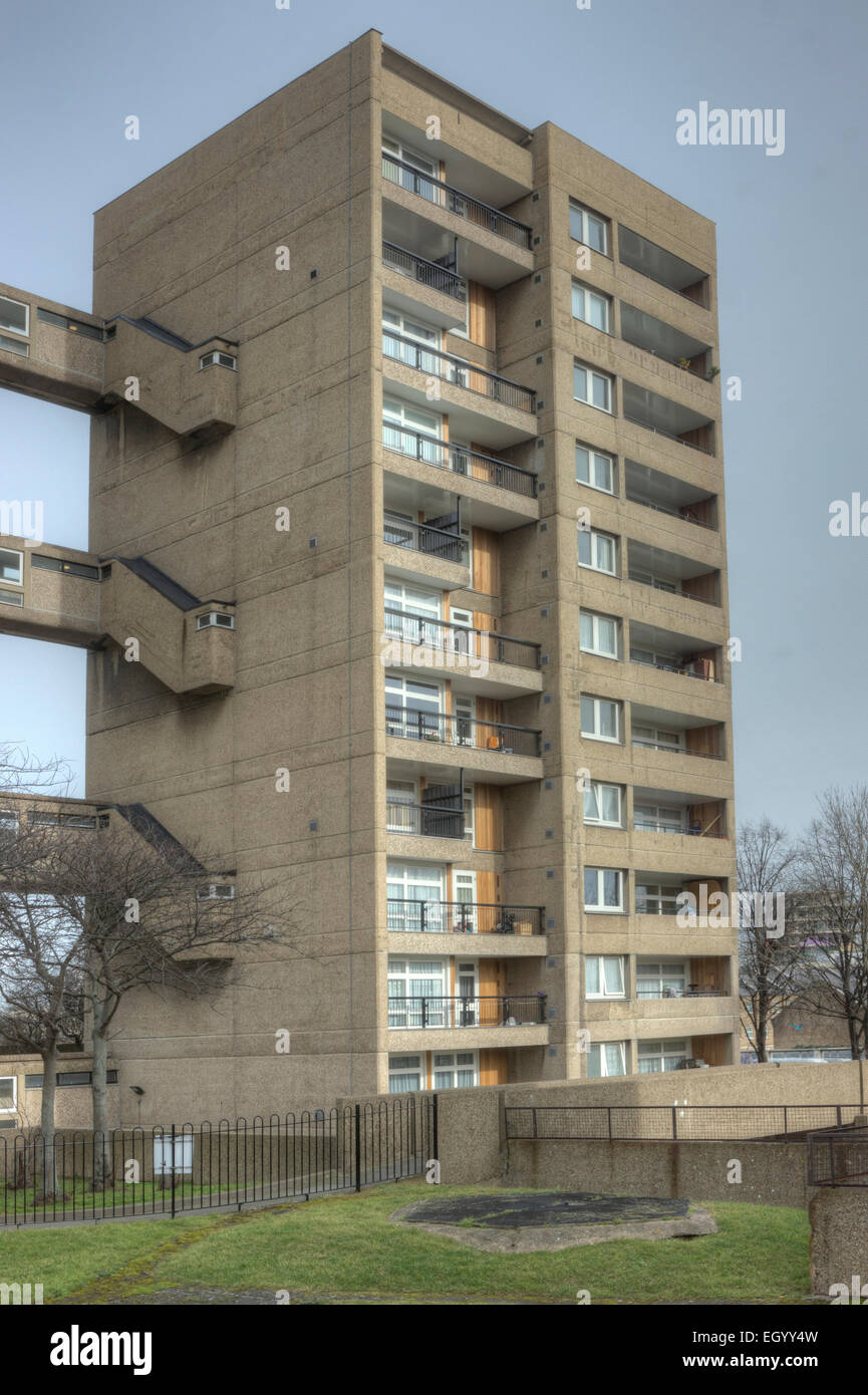 carradale house, Poplar London  brutalist tower block council estate - Stock Image