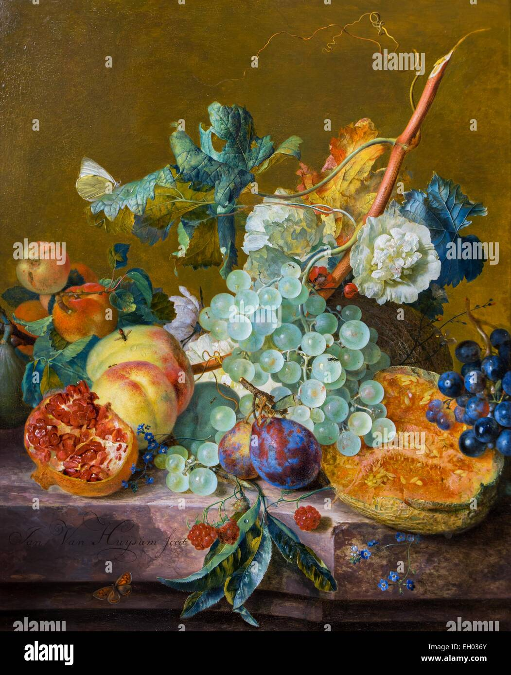 ActiveMuseum_0003302.jpg / Still life to fruits 25/10/2013  -   / 18th century Collection / Active Museum - Stock Image