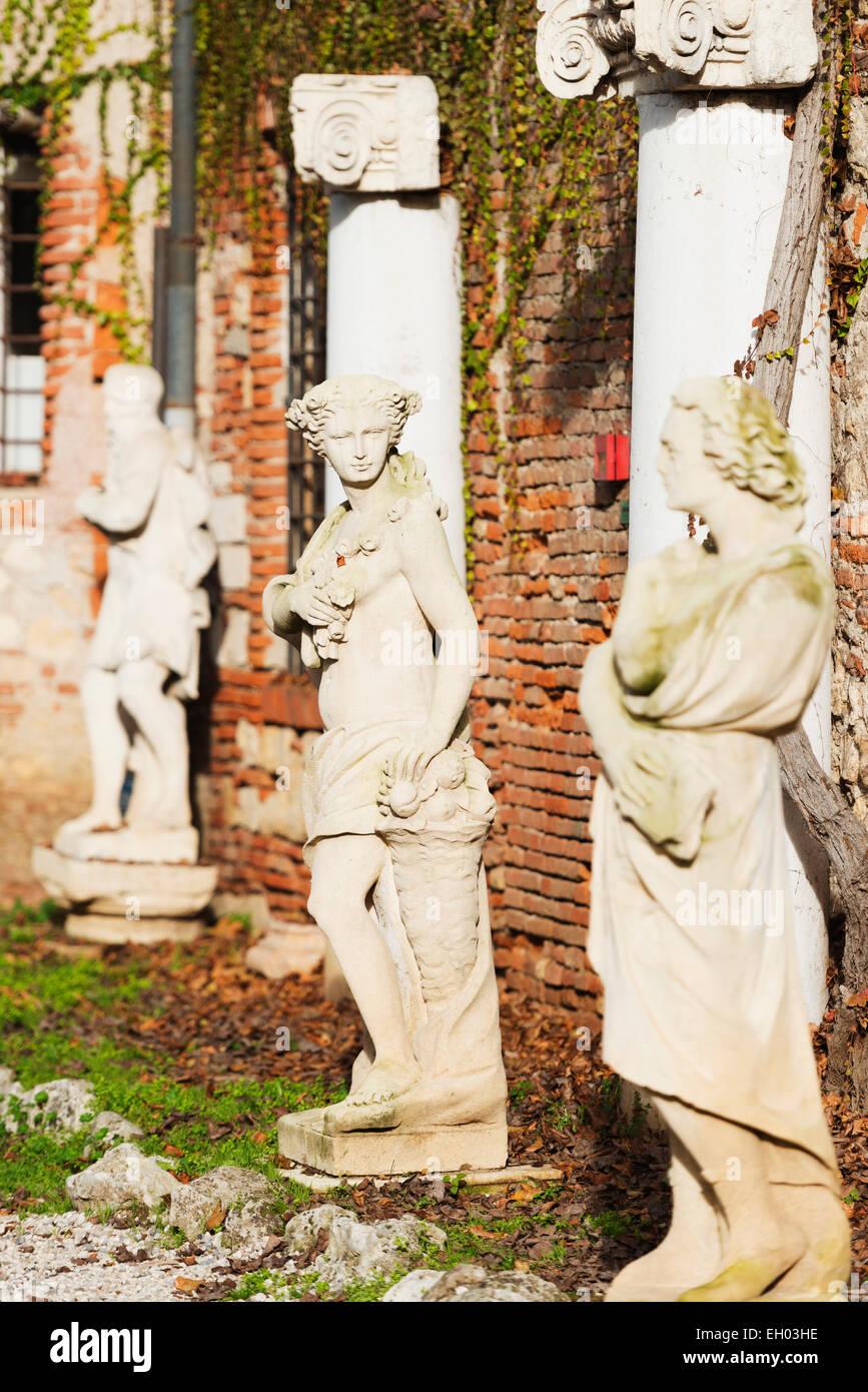 Europe, Italy, Veneto, Vicenza, statue outside Teatro Olimpico, Unesco World Heritage Site - Stock Image
