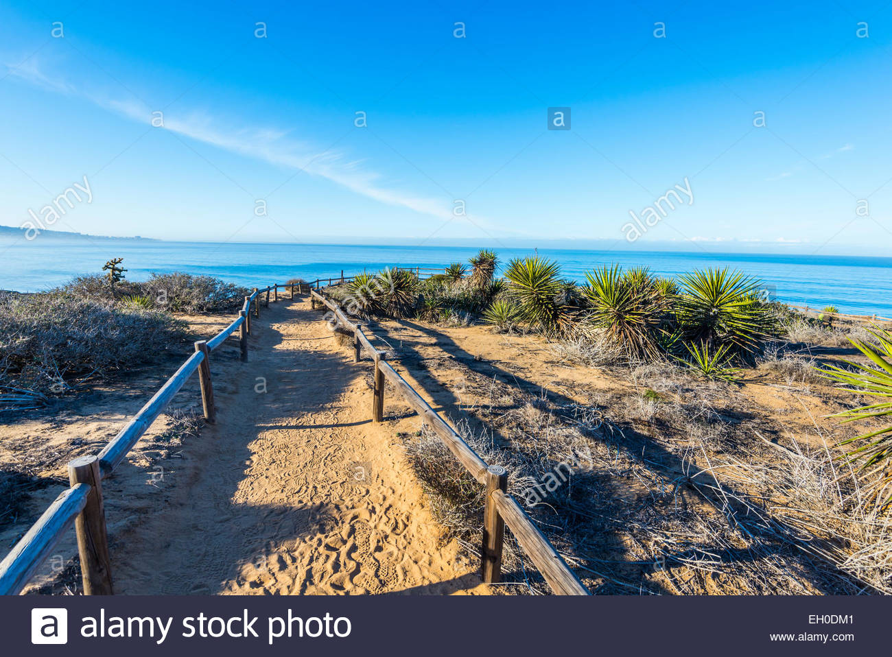 View of the ocean, plants, and chaparral at Yucca Point.  Torrey Pines State Natural Reserve, La Jolla, California, - Stock Image