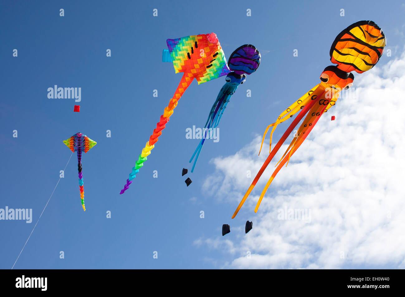 Kites flying over Bastion Point, in celebration of Matariki, the Maori New Year. Auckland, New Zealand. - Stock Image