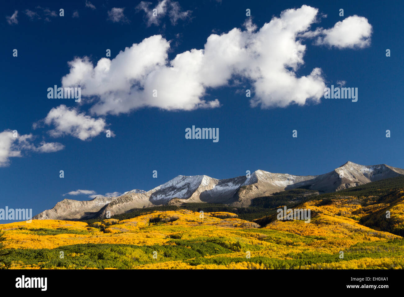 Autumn scenery in Gunnison National Forest, Colorado - Stock Image