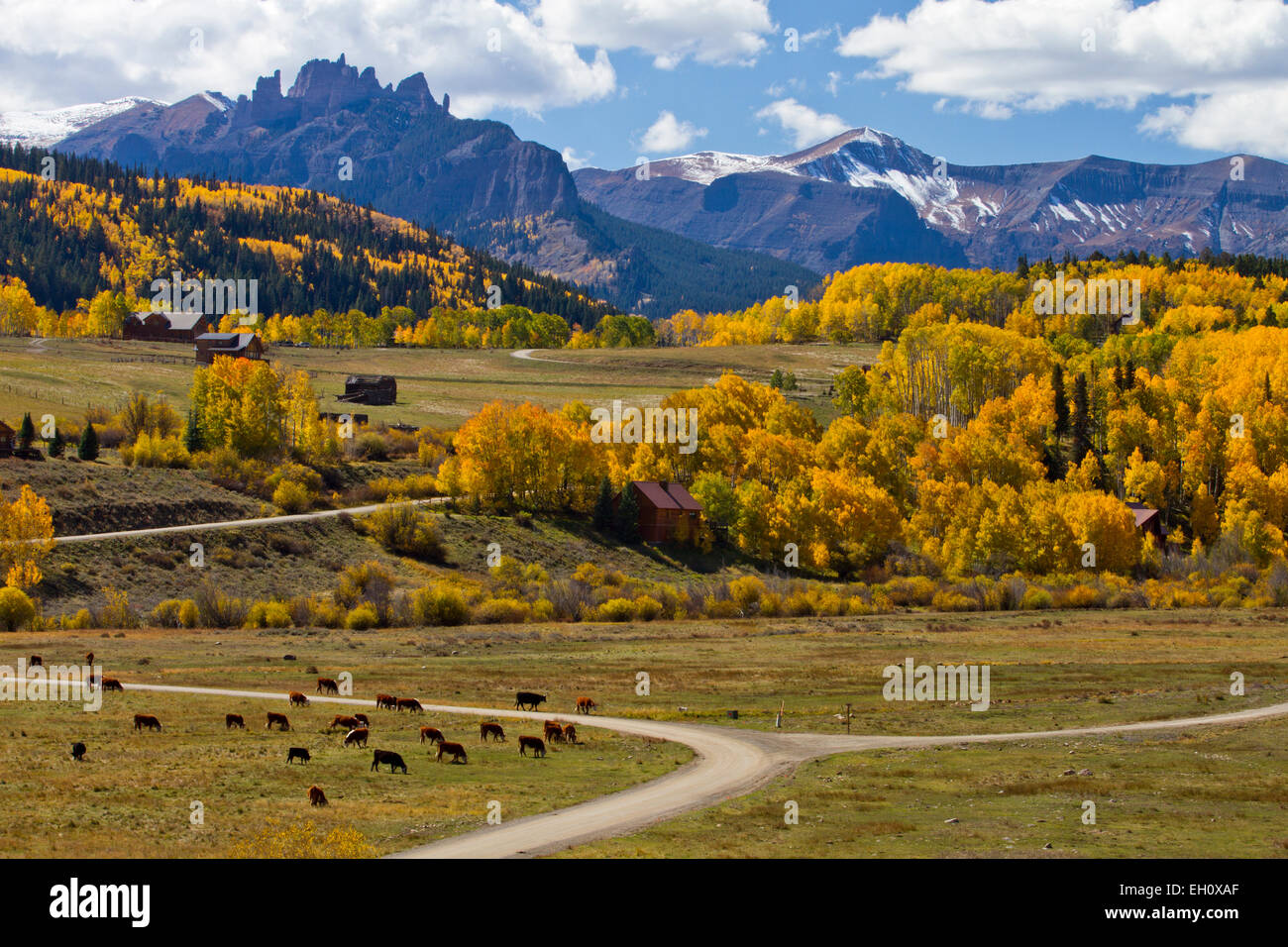 Fall scene in Gunnison National Forest, Colorado Stock Photo