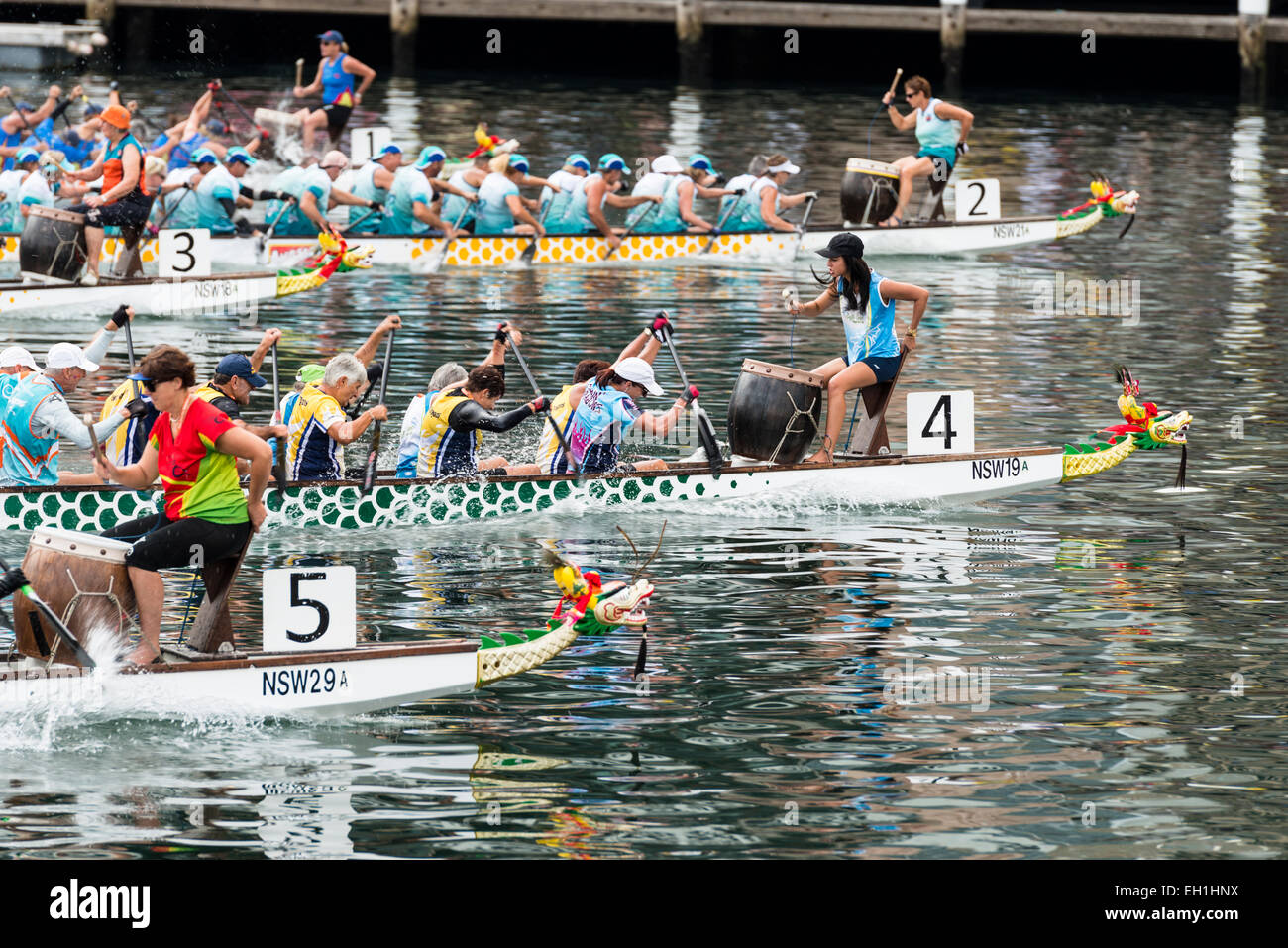 Women drummers set the pace during a dragon boat race, part of Chinese New Year 2015. Darling Harbour, Sydney, Australia - Stock Image