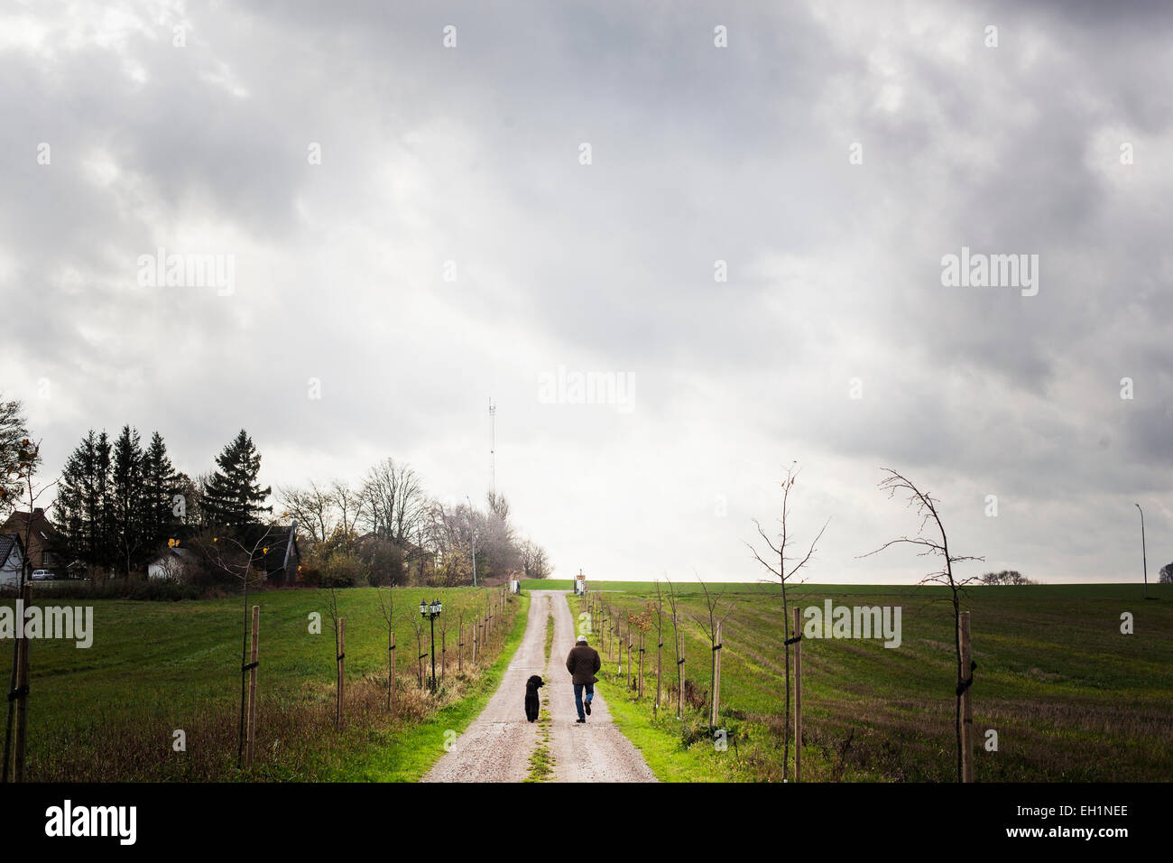 Rear view of man walking with dog on dirt road amidst farm against cloudy sky - Stock Image