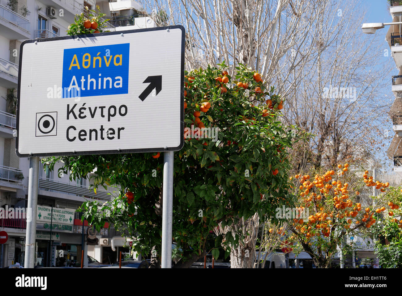 europe greece athens a street sign overgrown with oranges - Stock Image