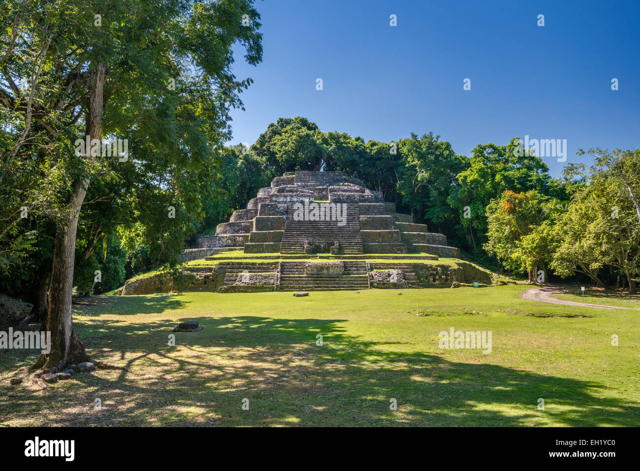 Jaguar Temple, seen across plaza, at Lamanai, Maya ruins, rainforest near Indian Church village, Orange Walk District, - Stock Image