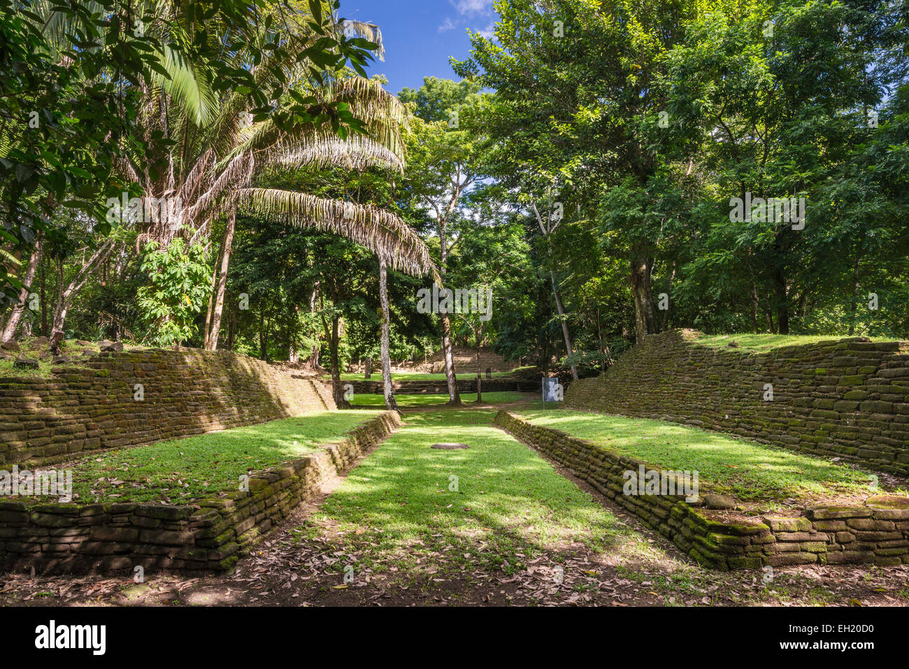 Ballcourt at Nim Li Punit, Maya ruins, rainforest, Southern Highway, Toledo District, Belize - Stock Image