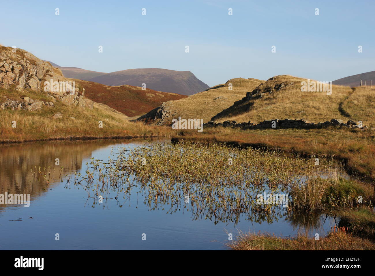 Tarn on High Rigg. Lonscale Fell in distance - Stock Image