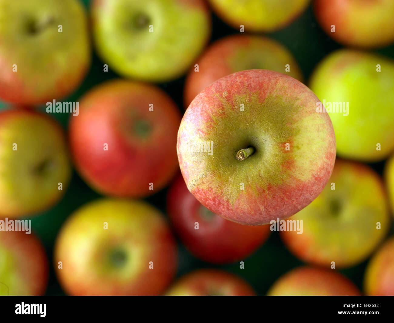 English apples - Stock Image