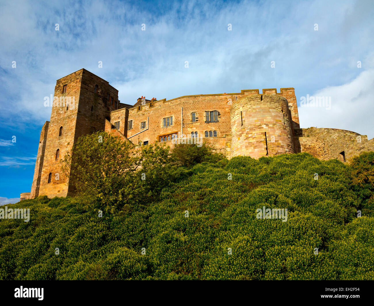 View from below of Bamburgh Castle in Northumberland England UK home of the Armstrong family - Stock Image