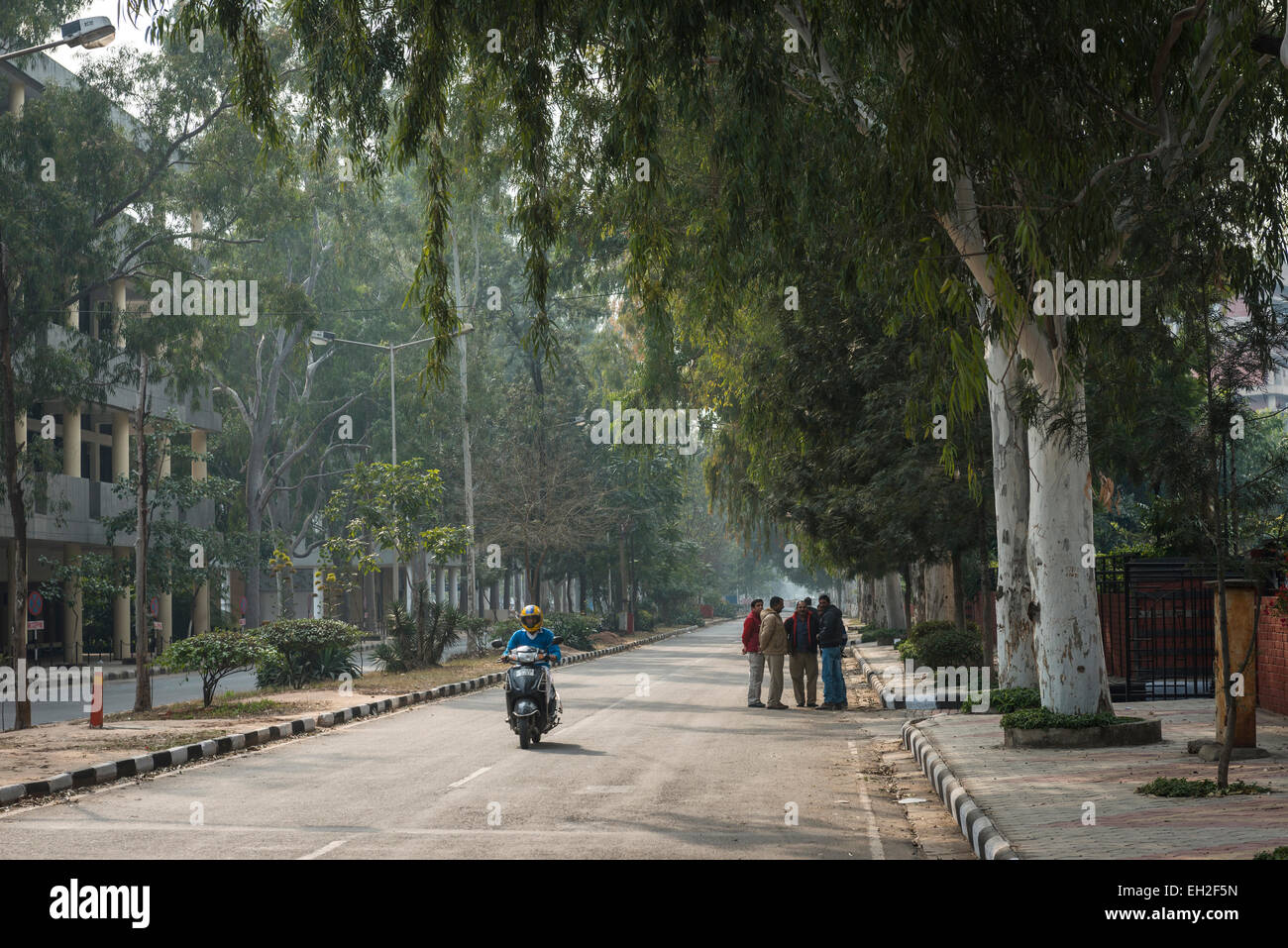 The wide tree-lined avenues of the modern city of Chandigarh, India - Stock Image