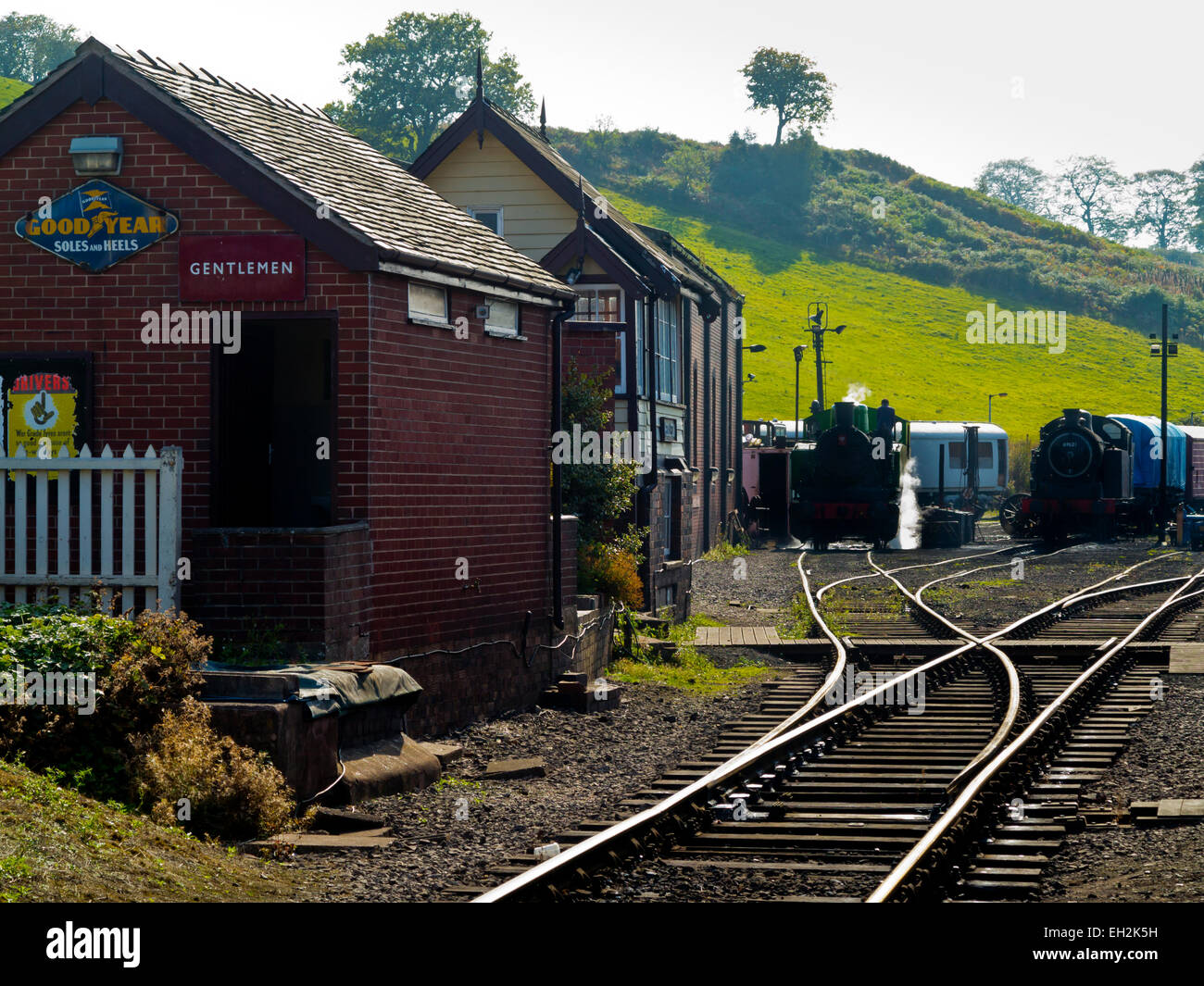 Steam engines on the sidings at Cheddleton railway station on the Churnet Valley Railway Staffordshire England, - Stock Image