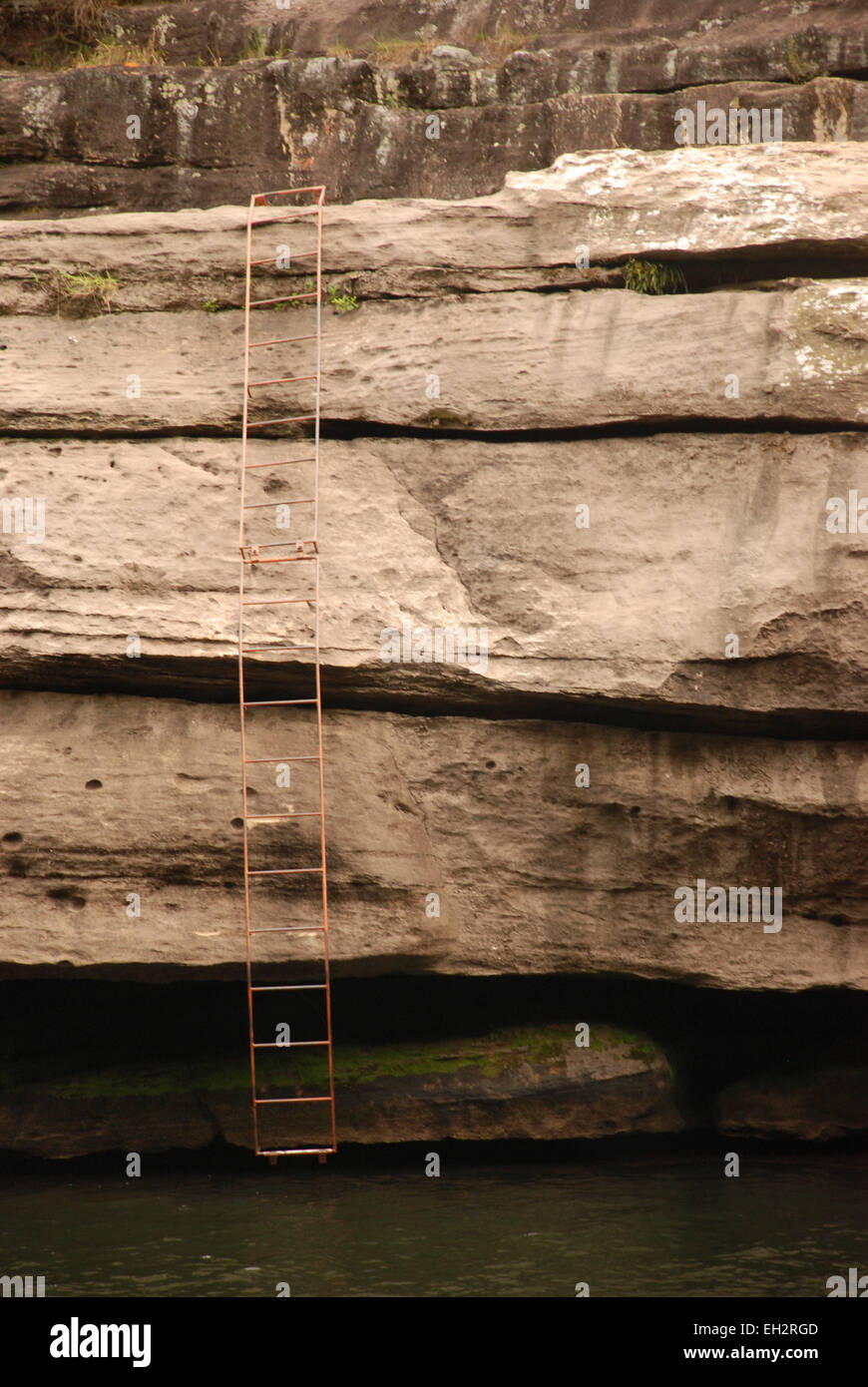 Ladder - Stock Image
