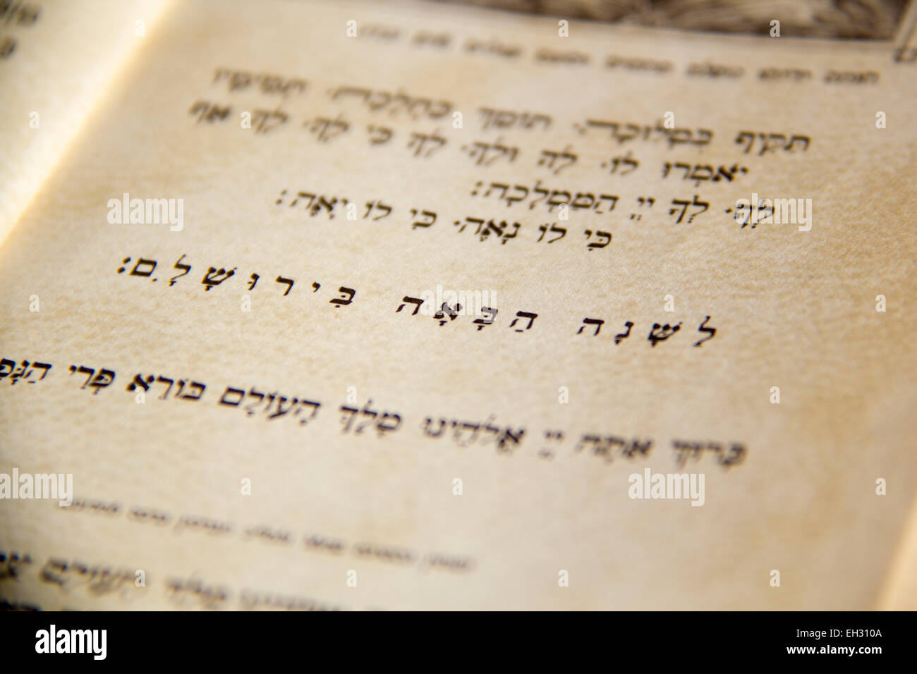 Closeup of Hebrew text  in traditional vintage Passover haggadah 'Next Year in Jerusalem'.Judaic Related - Stock Image