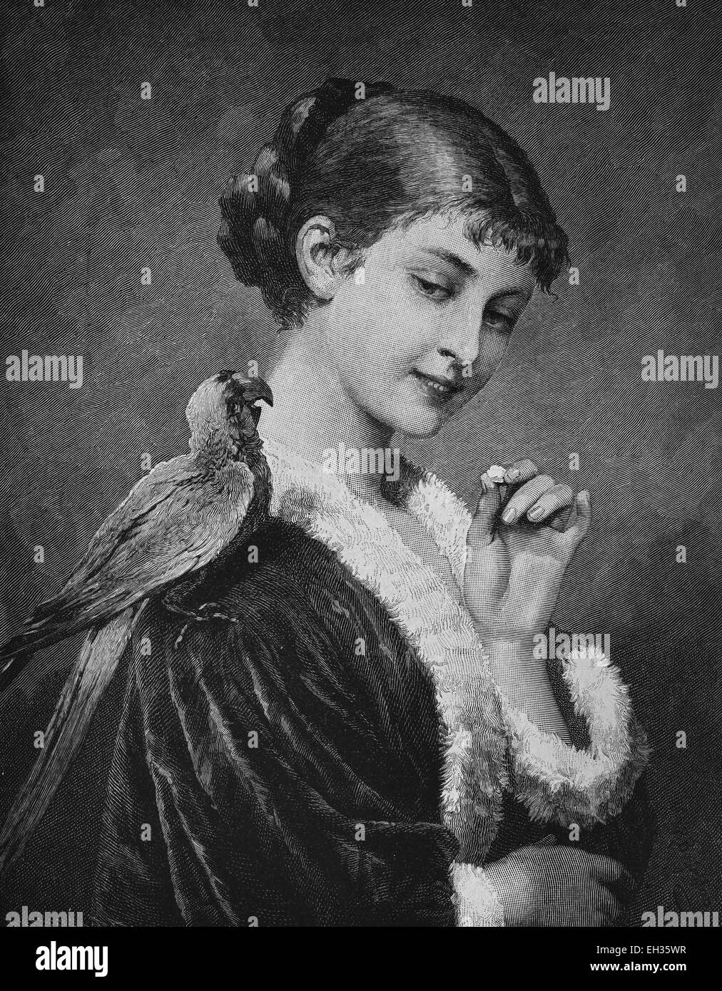 Woman with a parrot, woodcut, historical engraving, 1880 - Stock Image