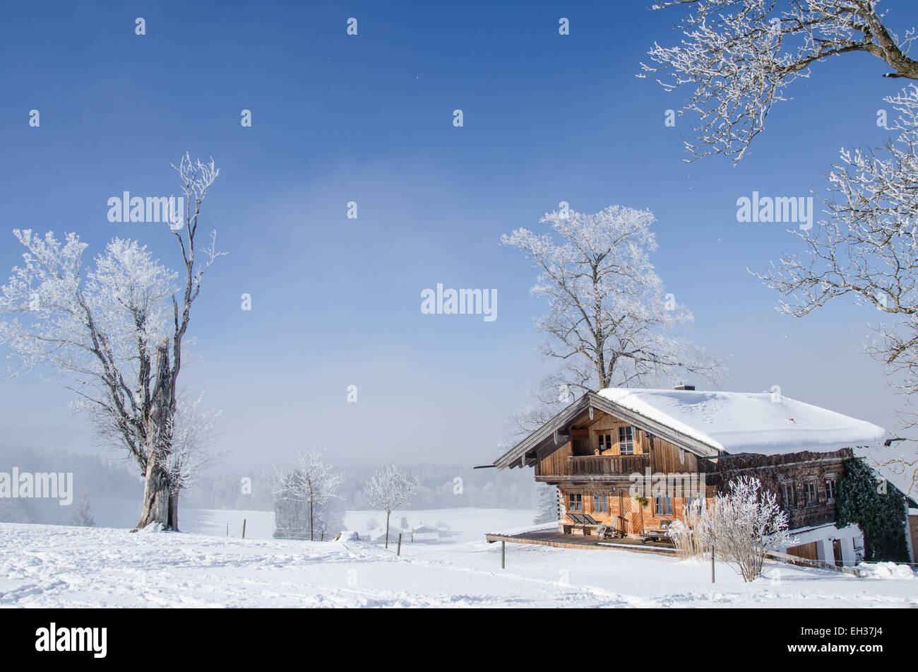Farmhouse in Upper Bavaria on a wintery day with hoar frost and a clear sky - Stock Image