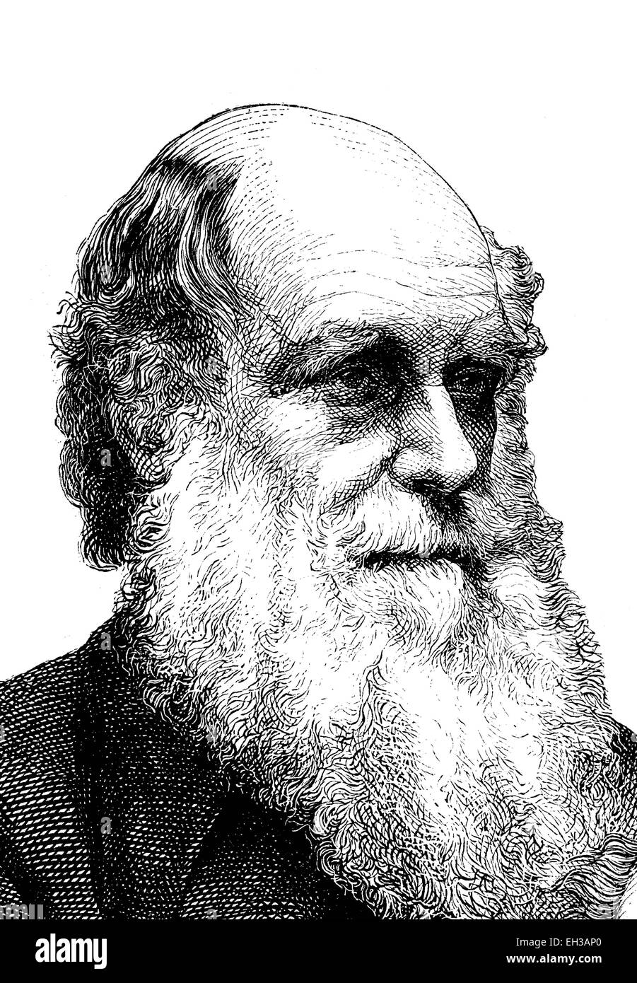 Charles Robert Darwin, 1809 - 1882, British naturalist, wood engraving, 1880 - Stock Image