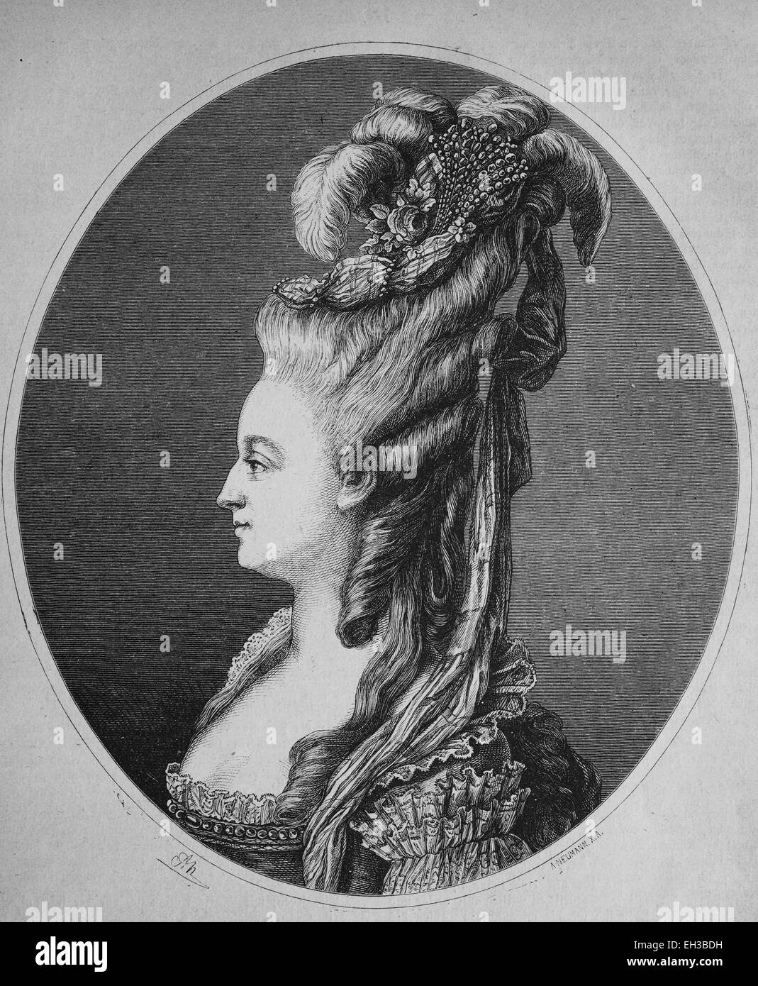 Marie Antoinette, 1755 - 1793, Archduchess of Austria, Princess of Hungary, Bohemia and Tuscany, wood engraving, - Stock Image