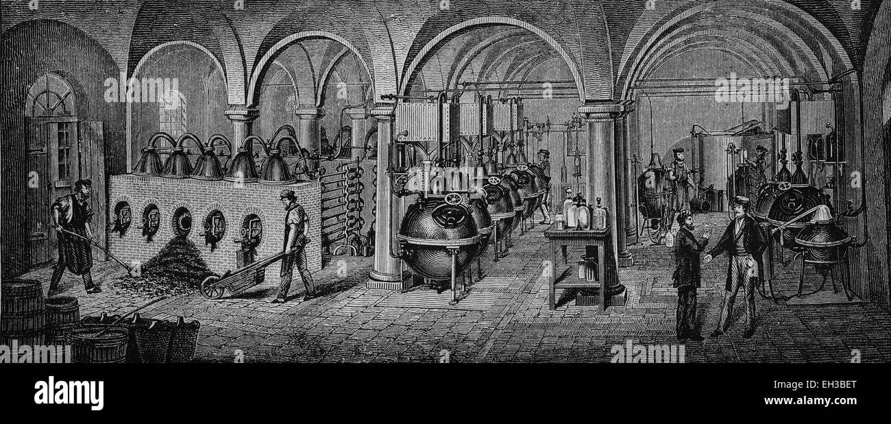 Factory of essential oils and essences, Schimmel und Comp. in Leipzig, Saxony, Germany, wood engraving, about 1880, - Stock Image