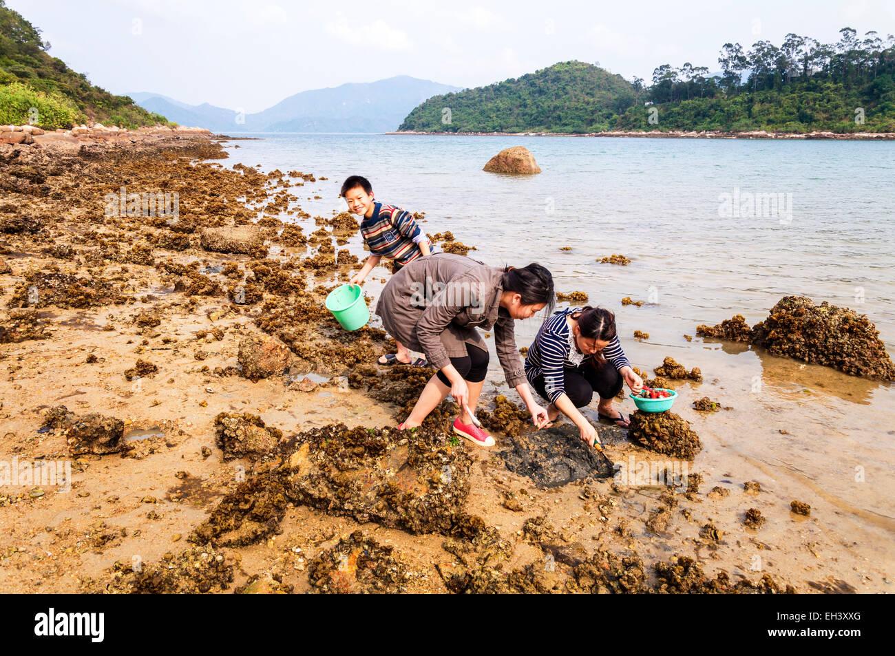 People children digging for shellfish at Star Fish Bay, New Territories, Hong Kong SAR - Stock Image