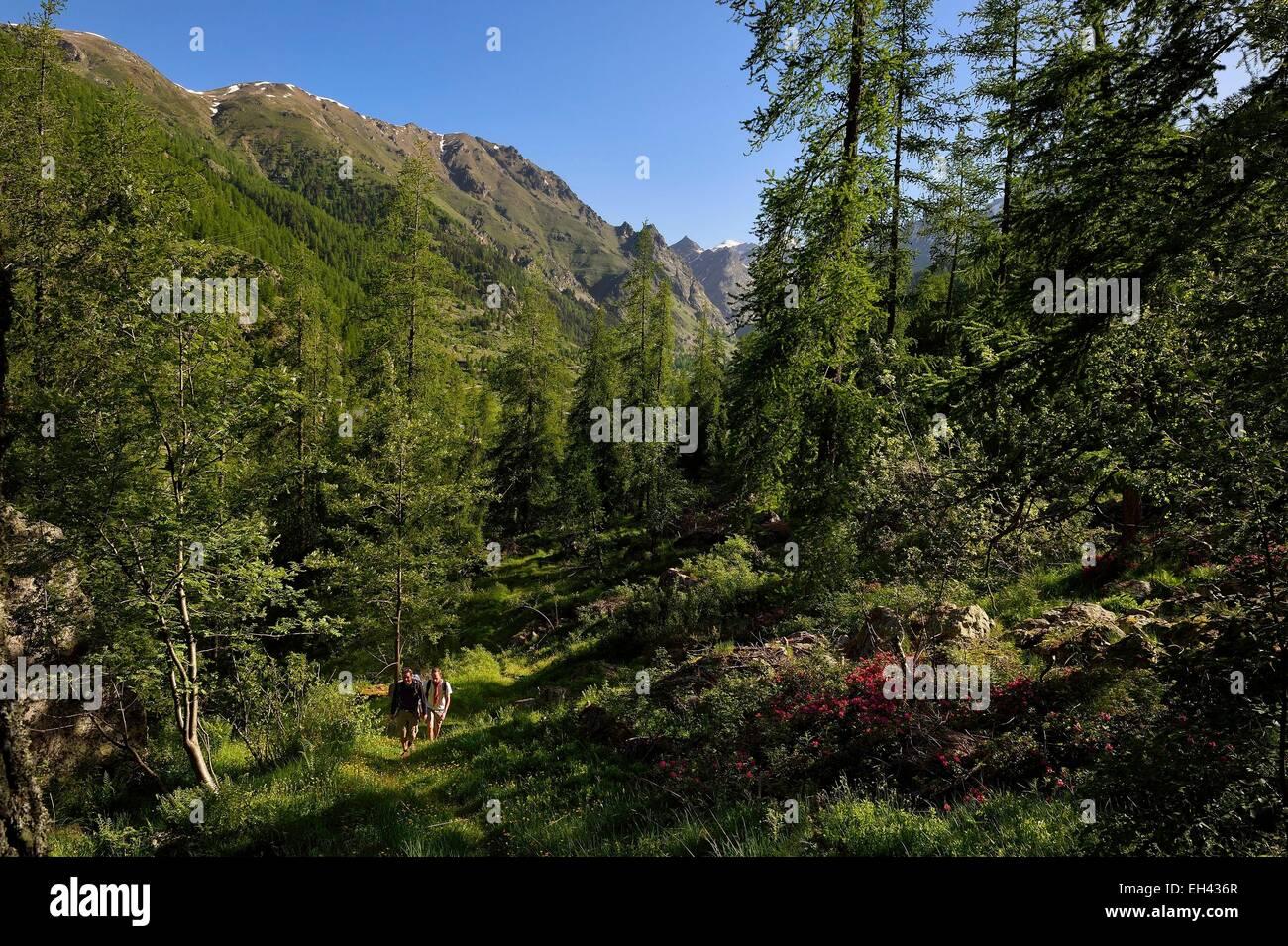 France, Alpes Maritimes, Parc National du Mercantour (Mercantour national park), Haute Vesubie, trek in the Gordolasque Stock Photo