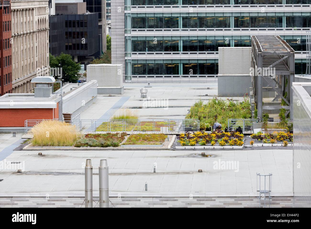 Green Roof Canada Stock Photos Amp Green Roof Canada Stock