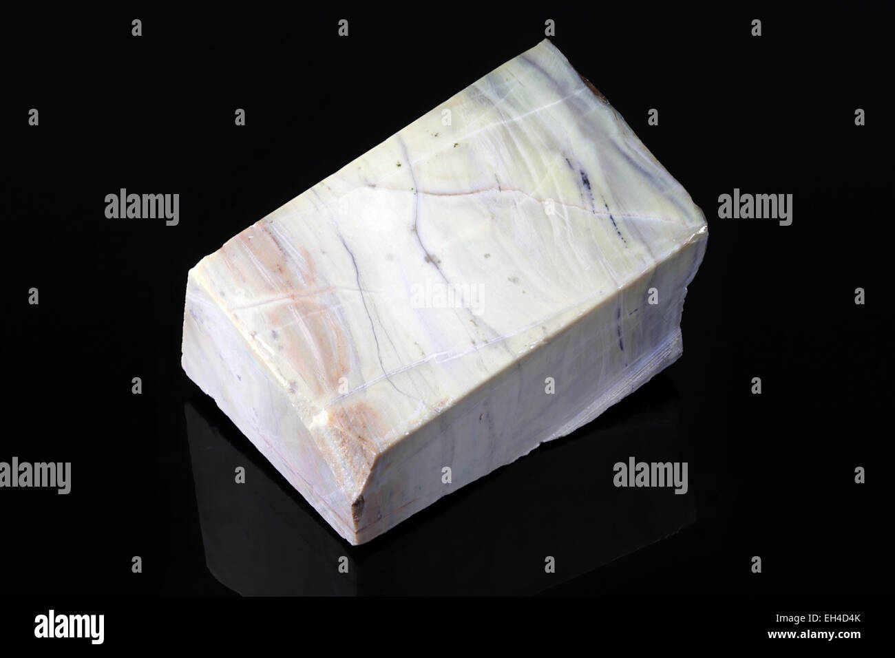 Archaen Butterstone - Predates the dinosaurs by over 2500 million years - From the Greenstone Belt of South Africa - Stock Image