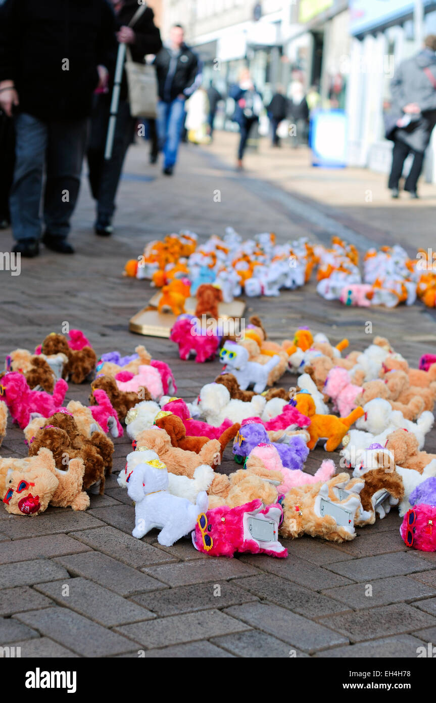 Mansfield Market Town Nottinghamshire,UK. Toy Dogs For Sale Via vendor . - Stock Image
