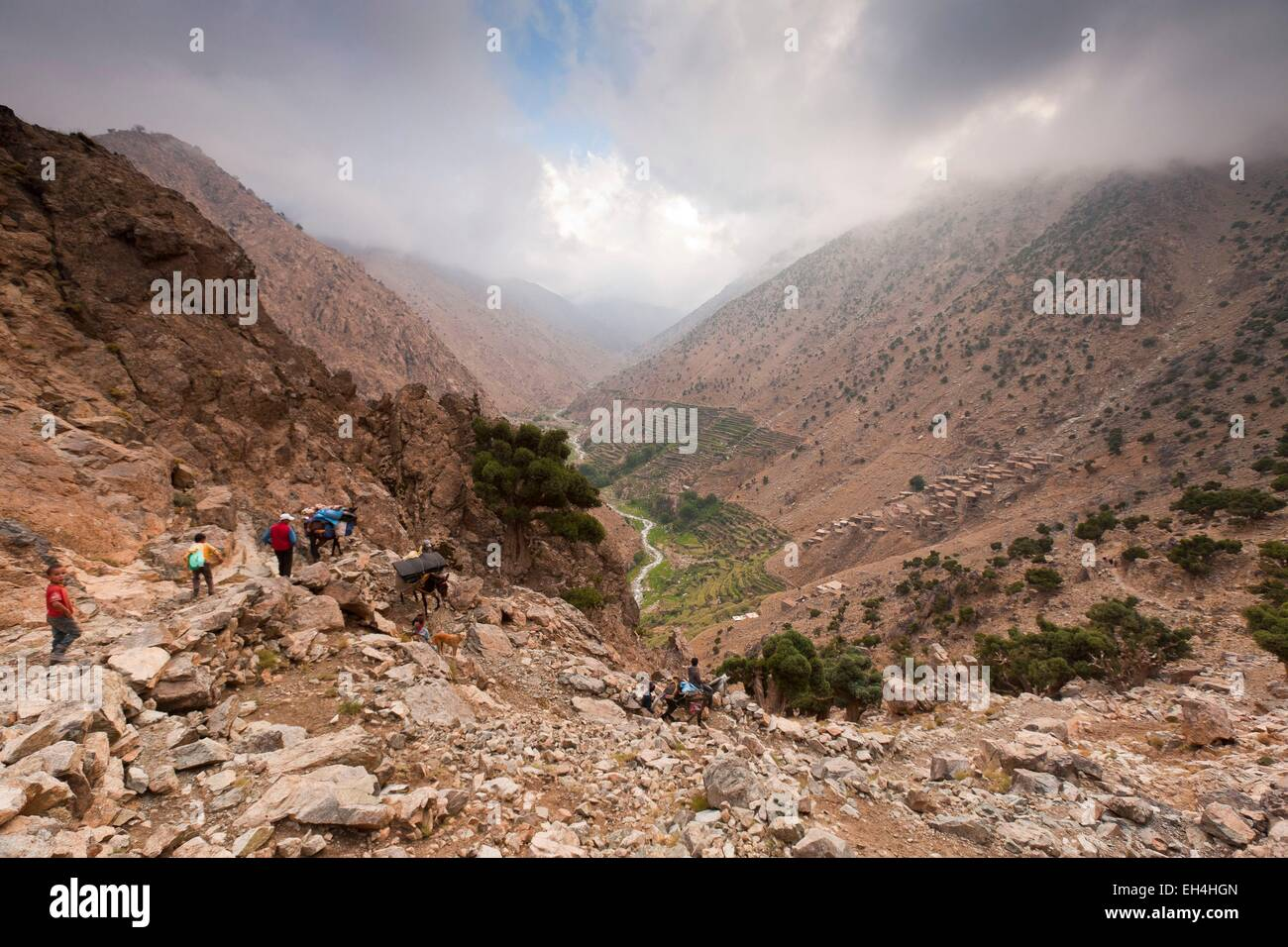 Morocco, High Atlas, Toubkal National Park, Ourika valley and village Amenzal - Stock Image