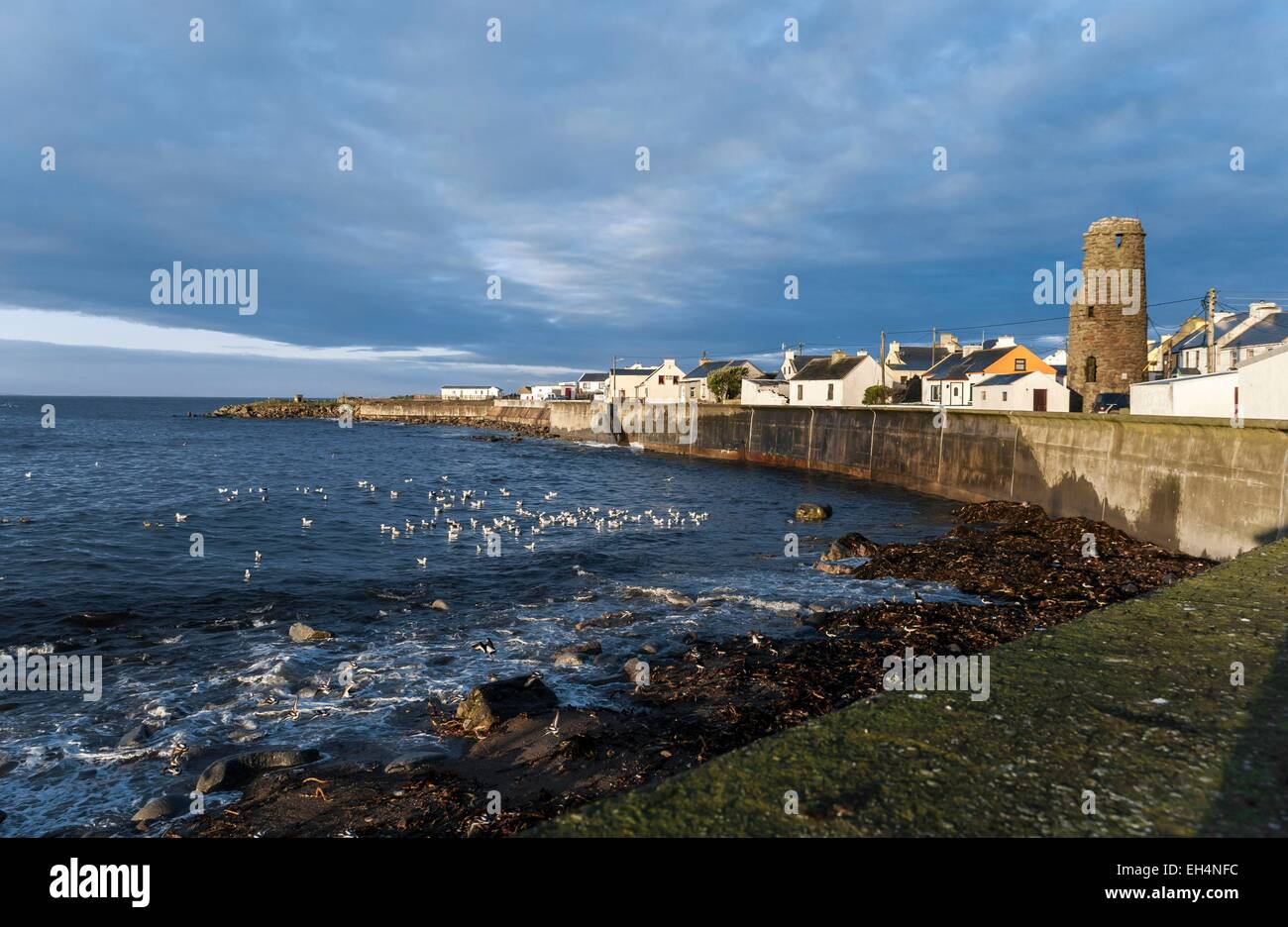Ireland, Ulster, Donegal County, Tory island, West Town the main village - Stock Image