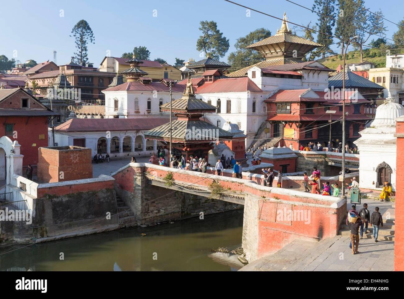 Nepal, Kathmandu valley, Pashupatinath hindu temple, listed as World Heritage by UNESCO - Stock Image
