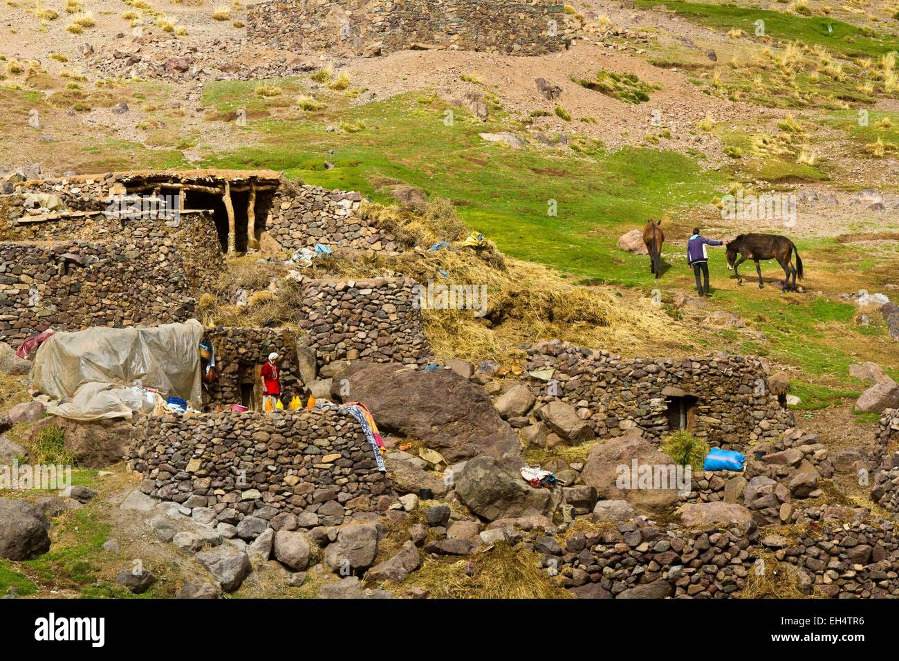 Morocco, High Atlas, Toubkal National Park, Ourika Valley, Berbers to sheepfolds Likemt - Stock Image