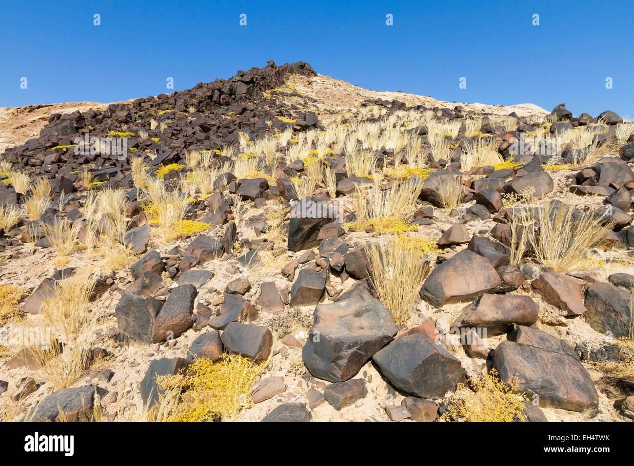 Namibia, Erongo region, near Swakopmund, Namib desert, Namib Naukluft national park, casting dolerite - Stock Image