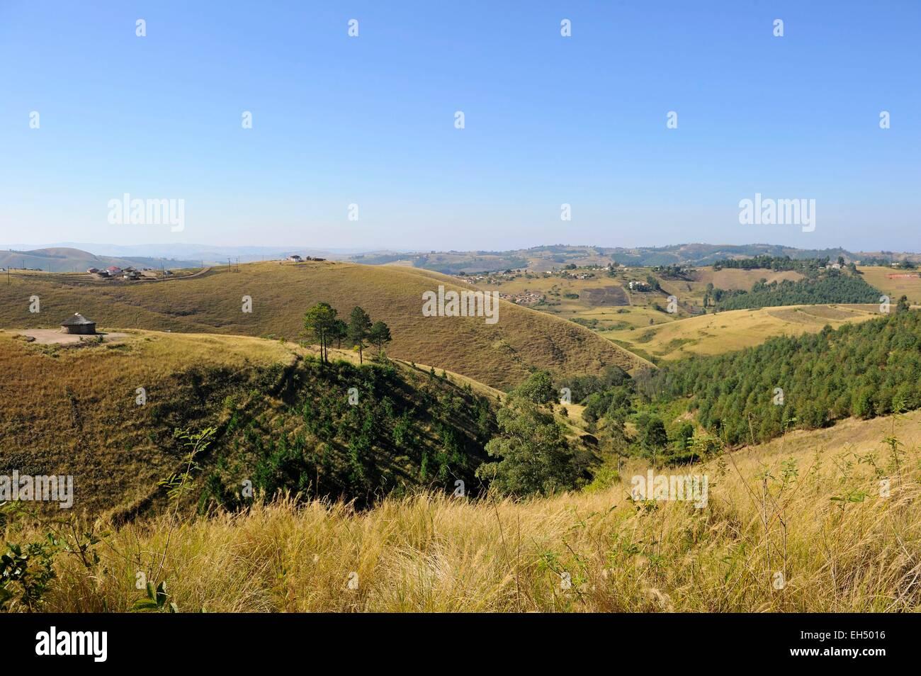 South Africa, Kwazulu Natal, Eshowe, Zululand - Stock Image